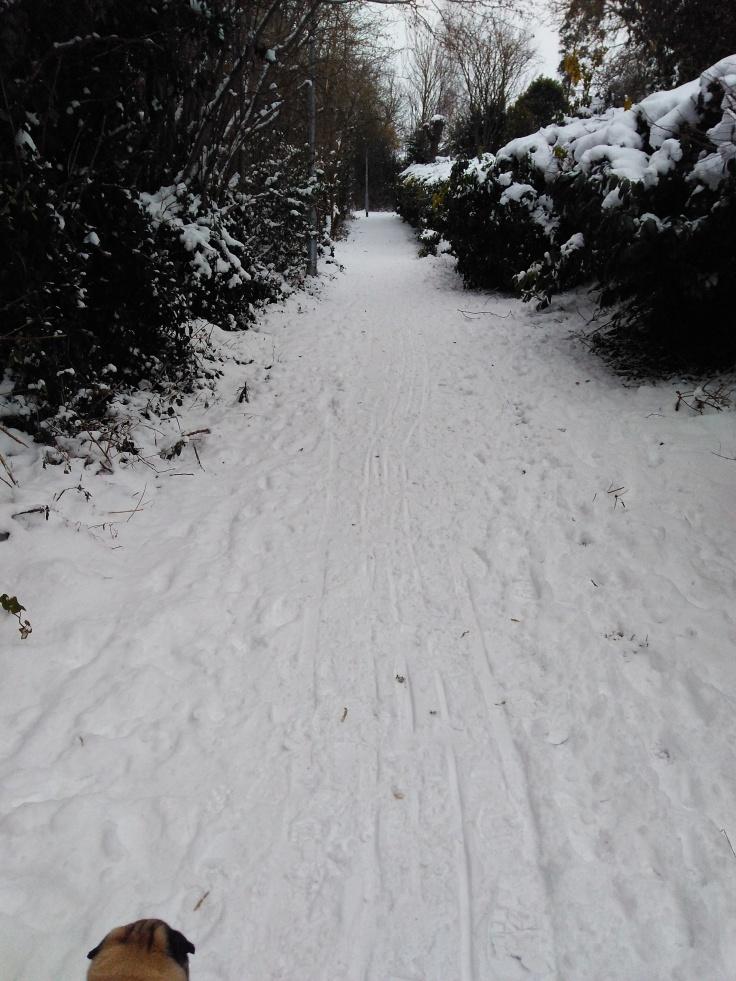 6.03.2018 - Snow footpath